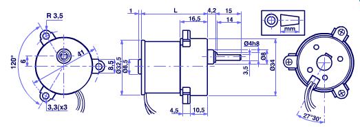 MicroMotors B138F DC Motor mit Stirnradgetriebe