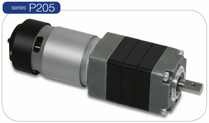 MicroMotors P205 DC Planetengetriebe Motor
